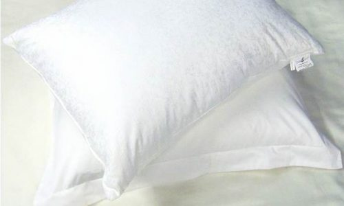 oreiller soie anti acarien